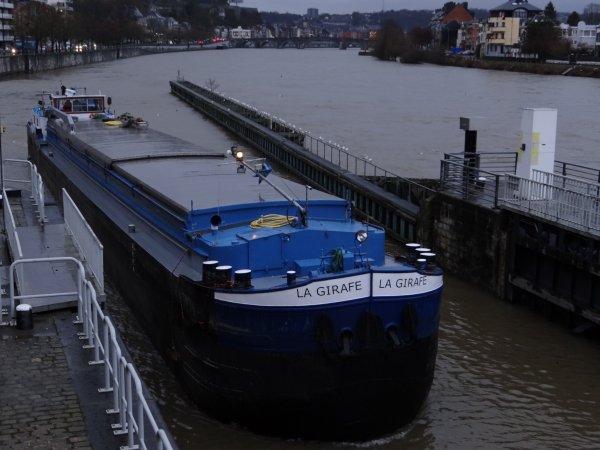 Dernier voyage de l'année pour le LOMA (B) et le premier sur la Haute-Meuse pour un nouvel équipage hollandais avec LA GIRAFE (NL)