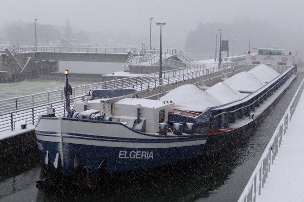 La Plante sous un manteau blanc... - ERNA II , ELGERIA, CURSOR & LAS PALMAS parmi les 8 bateaux du jour.