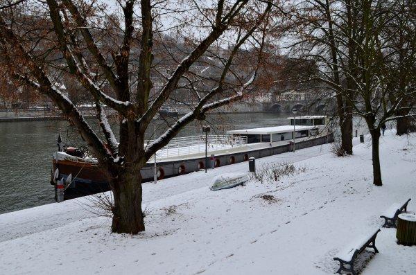 NAMUR - Refuge hivernal au Port de plaisance de Jambes (Henri-Hallet-PAN) -  FARCEUR - VIF ARGENT - MEERMIN - Les nouvelles du KAIROS depuis Monsin (Liège)