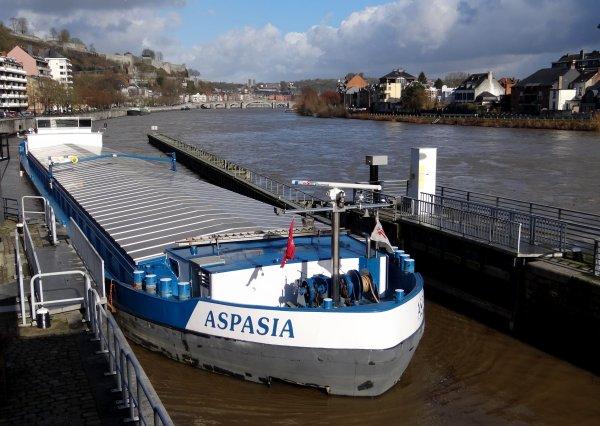 Vue sur le graphique du SETHY (INFOCRUE) - Débit de la Haute-Meuse à Chooz, le 2/2/2013 vers 6h. Légère remontée du débit et stabilisation sous les 600 m³/sec. ce qui permet aux équipages des BELVONA et SUNRISE de quitter la Haute Meuse....Les montants HELLBOY, ASPASIA (chargé), et SELAUMI affronteront les 580 m²/sec. de l'après-midi.