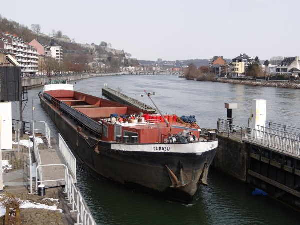 DC MOSA I (NL)  allongé de 13 m.  GT.1173 - 86,00 m. 8,20 m.  &  REX (B) GT.915 67,00 m. 8,20 m.