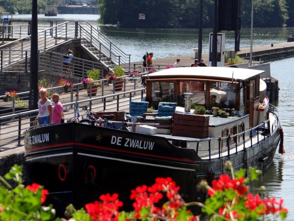 ELLJE (GB) & DE ZWALUW (NL)