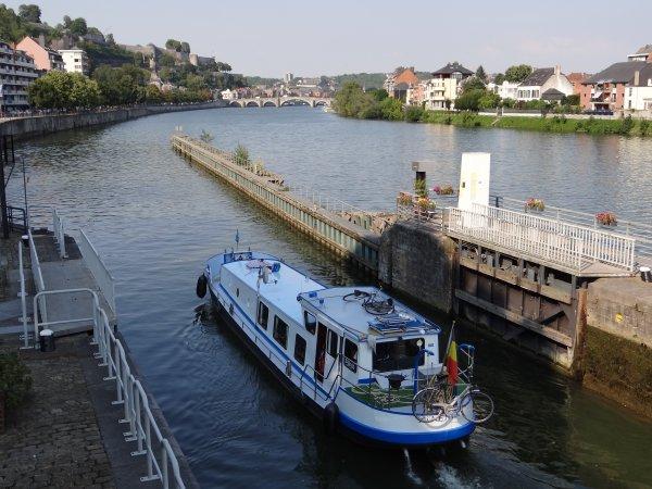 """Bienvenue au CHAVIGNOL (F) Douai -  Et vue sur 3 beaux """"Freycinet"""" Spits comme on dit chez nous,  MON DESIR, MAZZEL et FRANTO   ;)"""