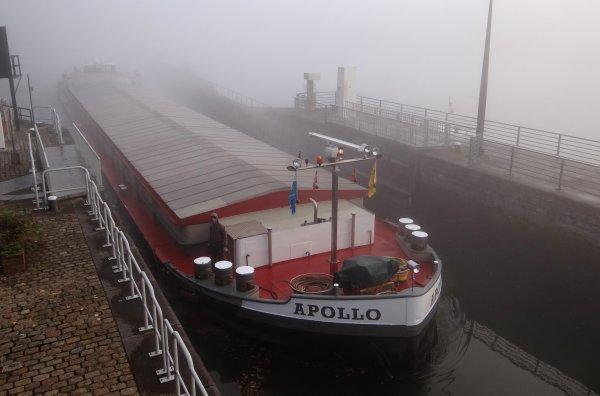 Après un ciel étoilé, APOLLO percera le brouillard matinal ce samedi 12 octobre 2013.