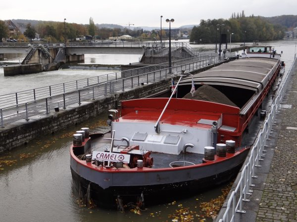 CAMELO (B) parmi les 14 bateaux de ce 21 novembre 2013.