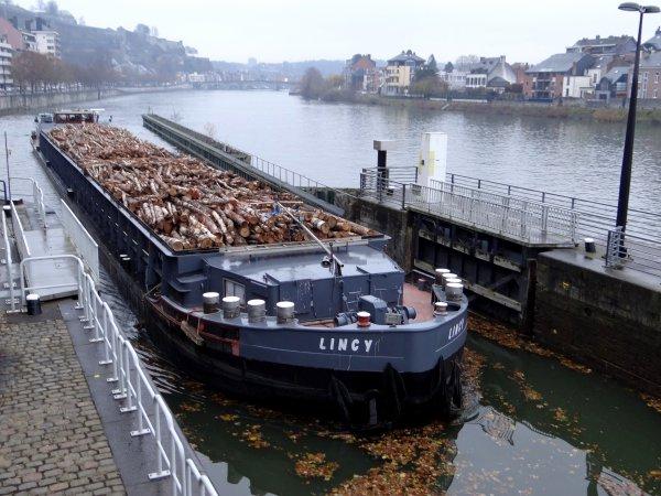 Nouveau transport sur la Haute-Meuse depuis la fin novembre, du bois de bouleaux en provenance de Lettonie (Riga), entre Ostende et Givet, à destination de fabriques de panneaux compressés (Unilin à Sedan (F) et à Wielsbeke (B).