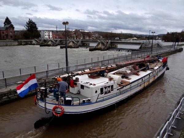 ALLONSO (B) et le Clipper, WESTENWIND (NL) en deuxième, après l'avalant prioritaire HELLBOY (régime crue)
