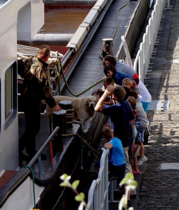 L'équipage et le gardien du Chavignol (F- Douai)  approchés par des élèves de St. Joseph pour un bref aperçu de la vie batelière...  Le retour du magnifique ANNA  ;)