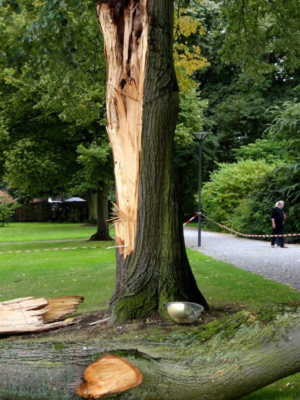Depuis quelques années déjà et malgré un abattage partiel, les arbres ou parties d'arbres du parc de La Plante tombent et endommagent les infrastructures du domaine des Voies hydrauliques... (2ème poteau en 4 ans et le garde-corps en prime!) Mais heureusement, à l'heure tardive des faits, ce 25/8 vers 23h., aucun promeneur en vue! A quand le bâtiment (Groupes hydr. et HT) qui assure la man½uvre de l'écluse?
