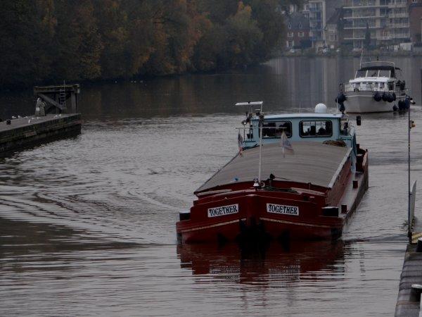 Le retour sur la Haute-Meuse du MERRIMACK et le spits TOGETHER parmi les 10 bateaux de ce 18 novembre 2014