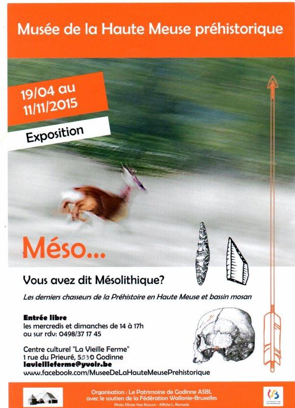 Musée de la Haute Meuse préhistorique - Exposition Méso... du 19/04 au 11/11/2015   ;)