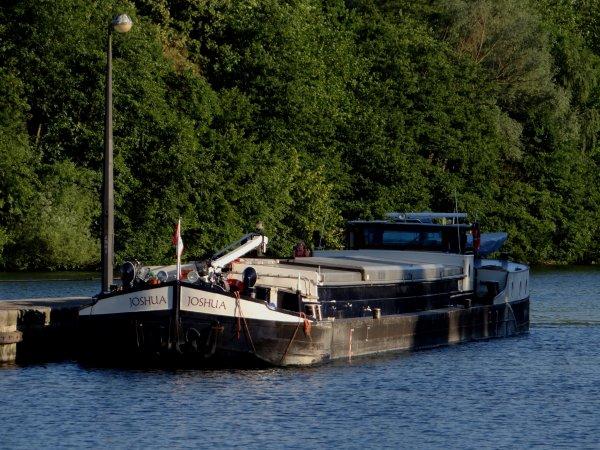 Canicule (35°) pour ce 1er juillet 2015 et envol du nombre de bateaux au pied de la haute Meuse, avec 46 unités...   ;)