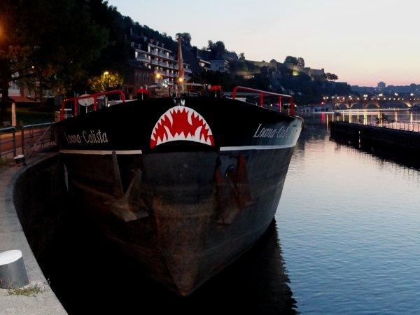 Les statistiques en nombre de bateaux de 2001 à 2015, et détail pour le mois de juillet, à l'entrée de la Haute-Meuse...