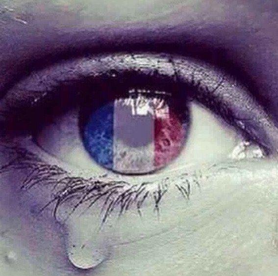 Retour au PC écluse après une pause pré-hivernale et un weekend bien triste en raison des attentats parisiens  :(