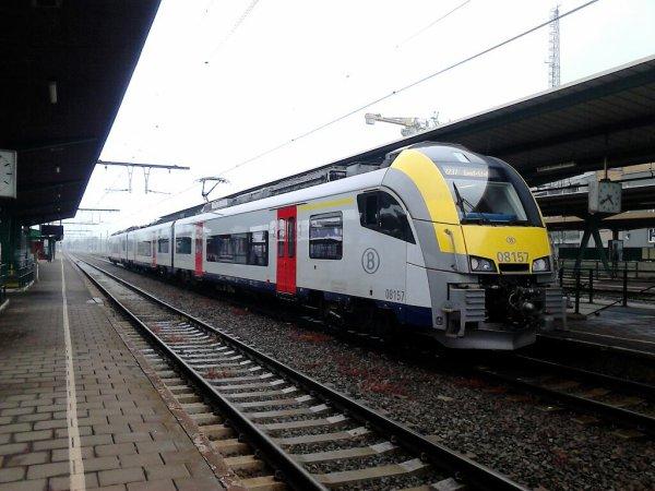 AM 08157 Denderleeuw