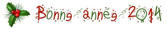 Bonne année 2014 ❄