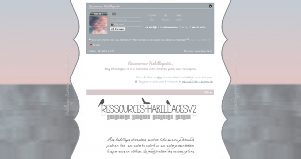 Habillage monocolonne n°228