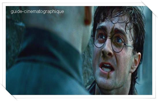 Harry Potter et les reliques de la mort - Partie 2 (2011)
