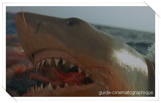 Les dents de la mer 4 : la revanche (1987)
