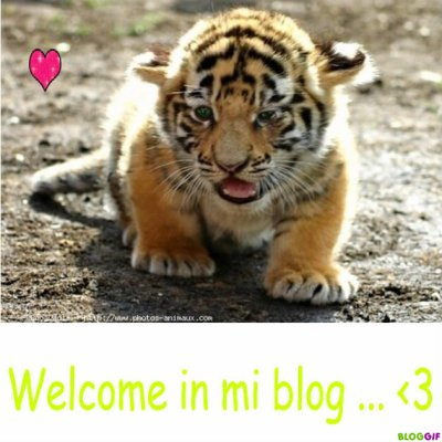 Welcomme ♥ ♥