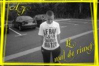 A.F. - Le mal de rimes (2010)