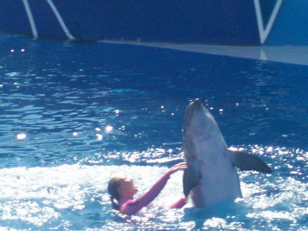 Sea World ! Samedi  4 septembre 2010