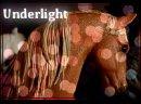 Photo de Underlight