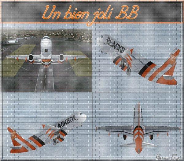A318,319,320, IAE et CFM BLACK BOX