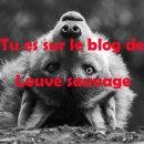 Photo de louvesauvage84