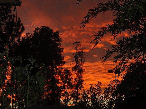 Juste parce que parfois la nature nous offres de magnifique ciels... Et que par chance nous humain nous avons l'opportunité et le temps d'immortaliser tout ça.