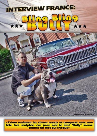 bullymag 2