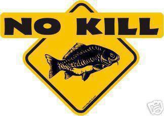 Pour nous, c'est l'esprit que tout pêcheur devrait avoir.