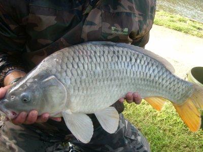 Pêche au domaine d'Helecine