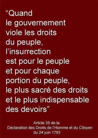 Article 35 de la déclaration des Droits de l'Homme et du citoyen du 24 Juin 1793. Dans le cas du Togo ,  on a plus d'autres  choix : Allons chercher notre liberation à travers l'insurrection.