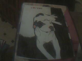 mon chien que jai dessine