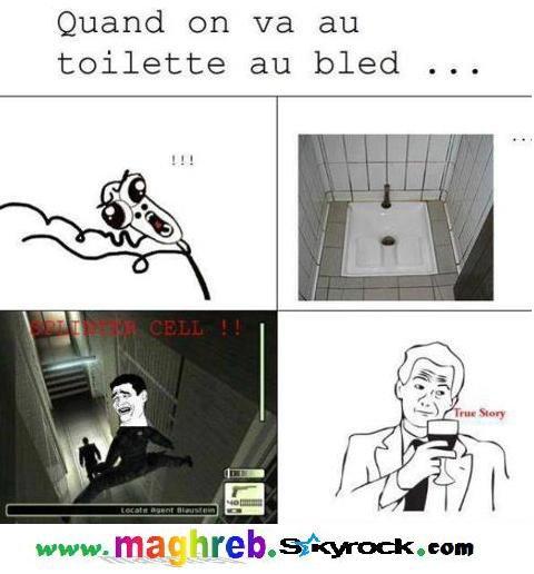 Les meilleurs trolls des blédar en Français  !!!