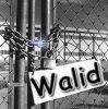 walide-x90