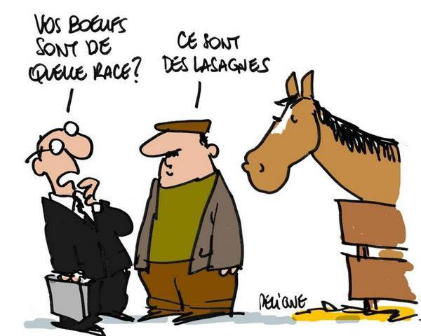La polémique à propos de la viande de cheval dans les produits Findus