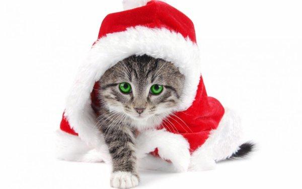 Petit concours de Noël avec des cadeaux à gagner !