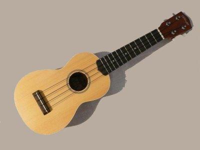 Mon ukulele blog de fan 2 ukulele for Porte ukulele