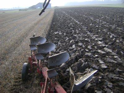 Labour d'hiver chez moi 2010