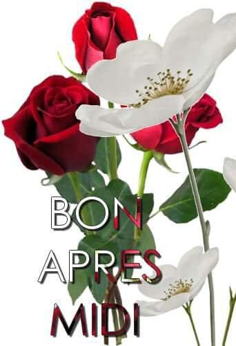 BONNE  APRES MIDI  MES  AMIES  BISOUS  /*/*/*/*/*/*/