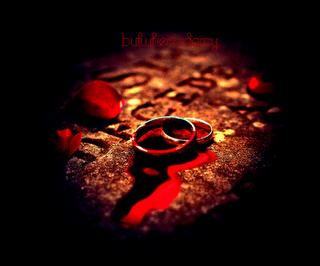 Comment se débarasser d'/sauver un vampire amoureux.