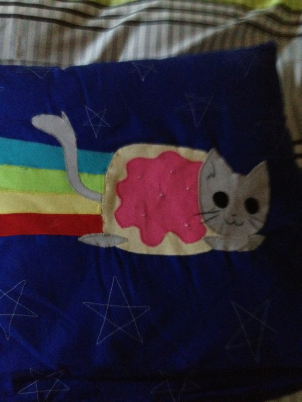 BRICOLAGE: Mon coussin Nyan Cat. ~