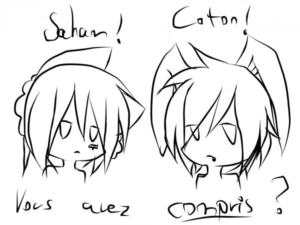 DELIRE: Coton et Saham? .. NO, SAHAM ET COTON !