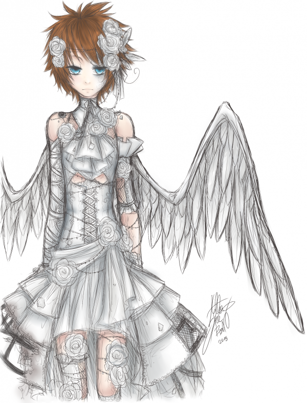 DRAW: '' The Dove '' (Torikago new version)