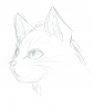 SKETCH: cat face