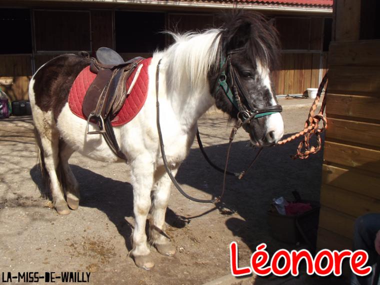 ★ Nenette & Léonore ✩