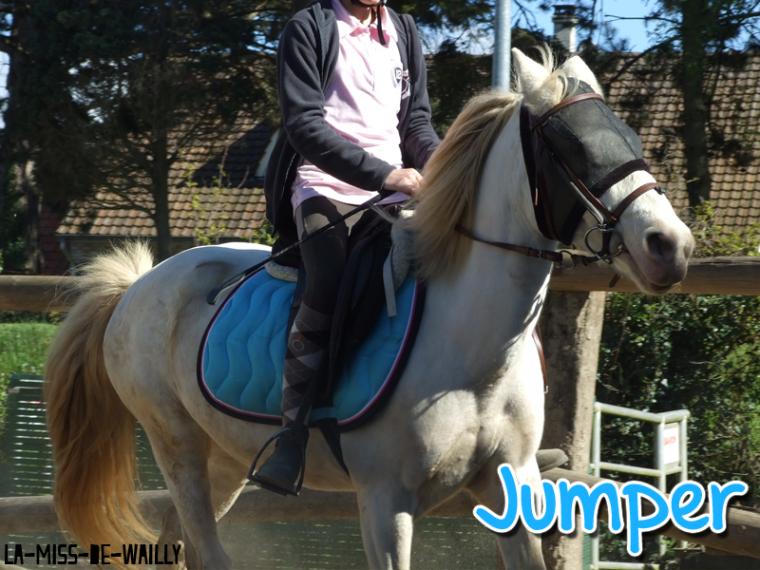 ➵ Jumper & Timinus ☯