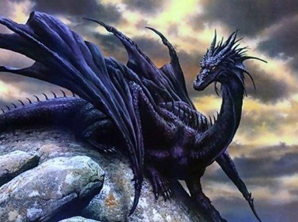 Le mage et le dragon (OS)
